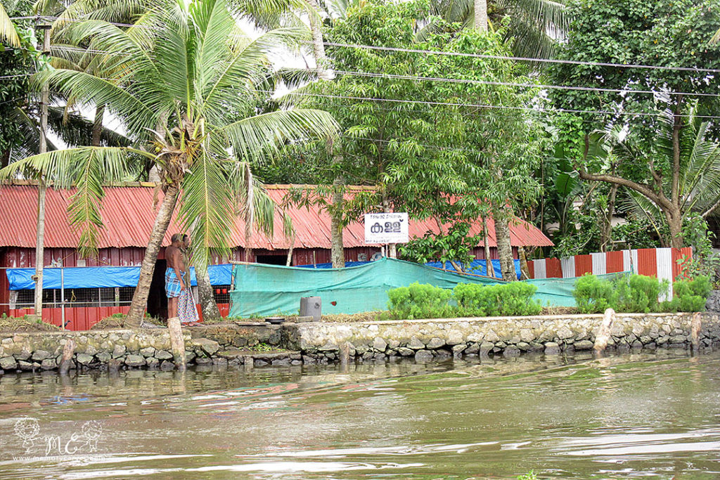 alleppey scenes
