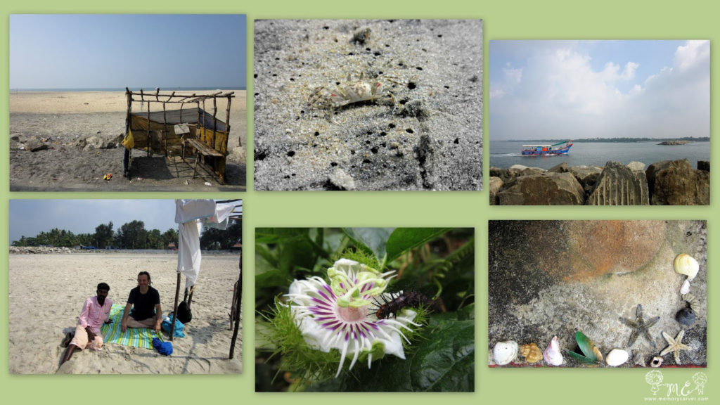 Snippets from our trip to azheekal beack at kollam
