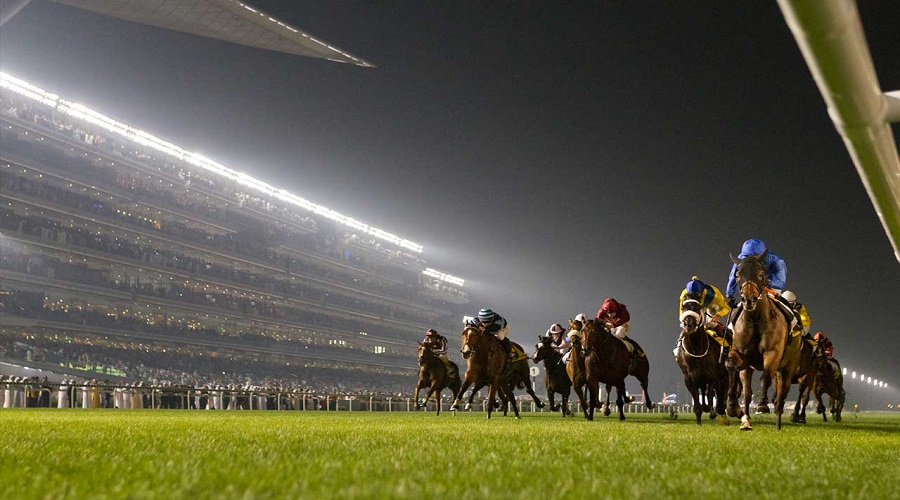 Race Nights at Meydan Racecourse