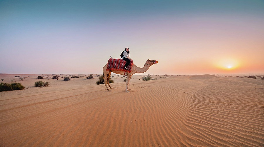 sands with the Desert Safari - not to miss while in Dubai